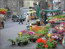 Saint-Flour Market,Cantal,Auvergne,France