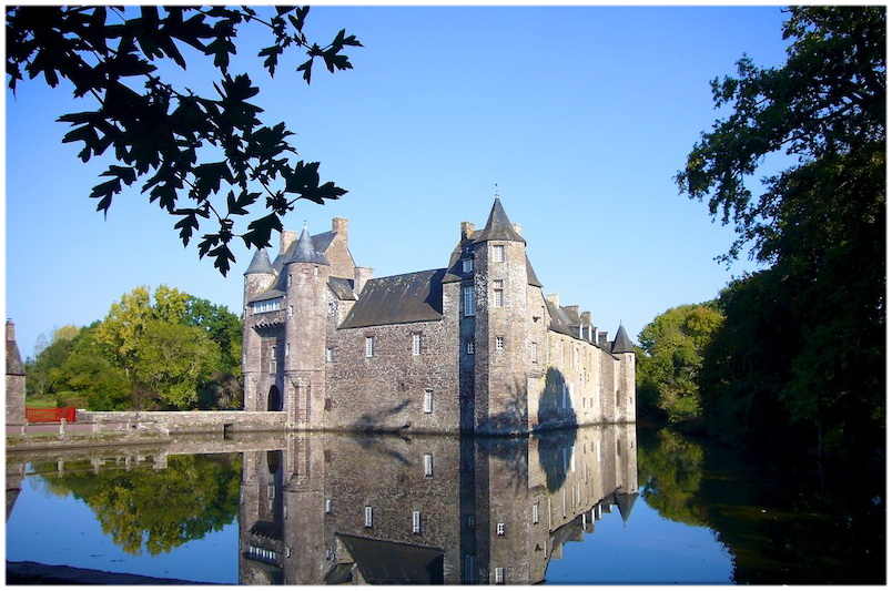 broceliande,bretagne,france