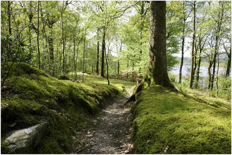 Le Chemin Des Dames Picardie France