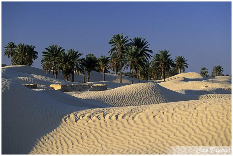Douz, Voyage en Tunisie