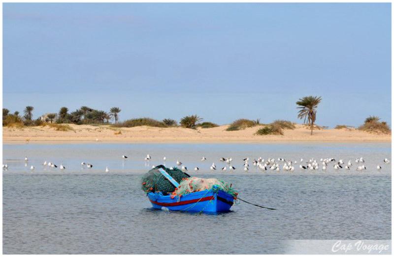 Plage de l'île de Karkennah, voyage en Tunisie
