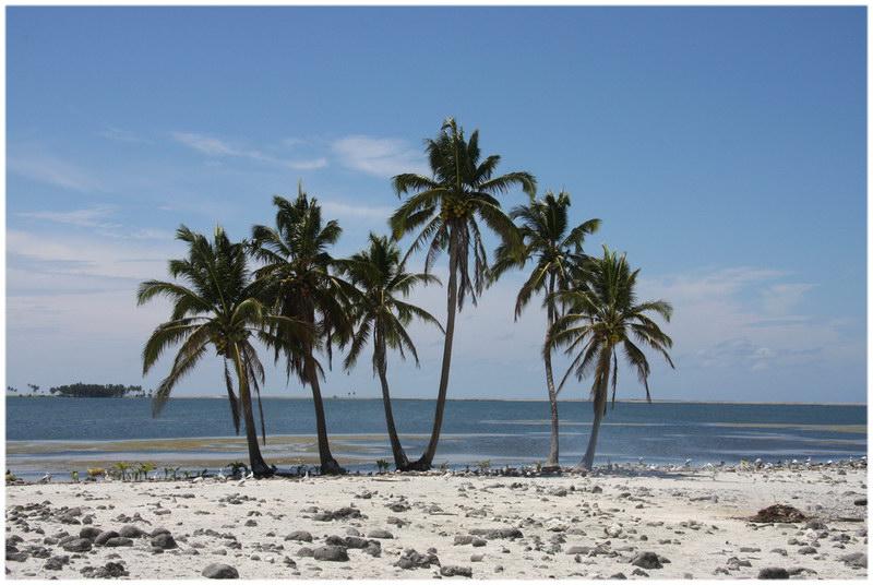Le lagon de l'île de Clipperton, Océan pacifique