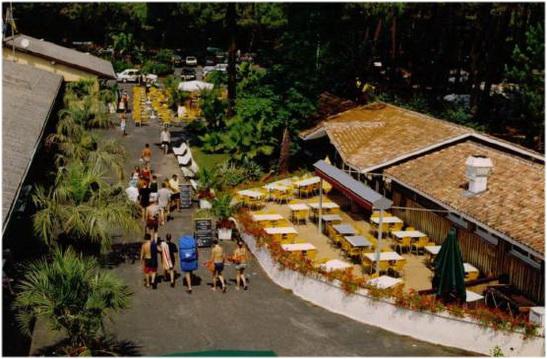 Les campings de Lege-cap-Ferret, DU TRUC VERT