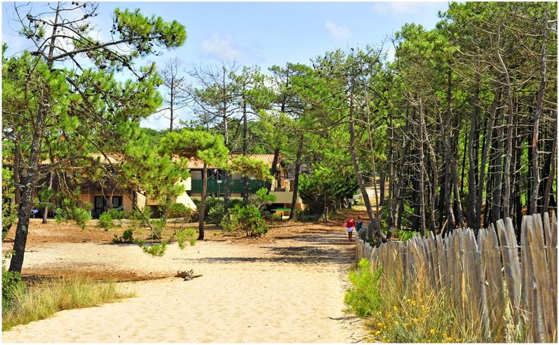 Lacanau, Gironde, Aquitaine, France, randonnee et nature