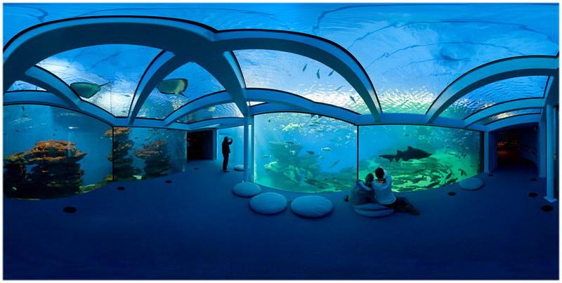 Top 10 des lieux o se dire je t aime paris cap voyage for Aquarium de paris jardin du trocadero