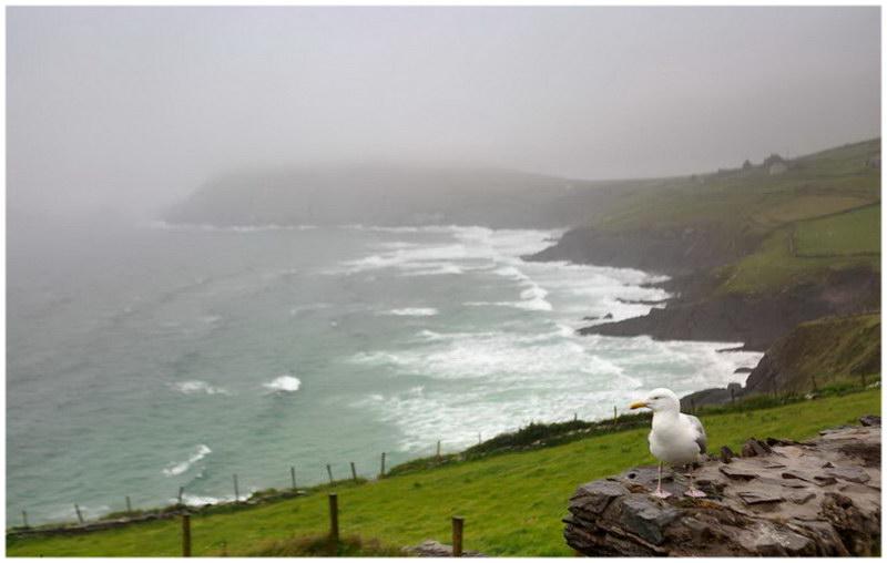 La brume sur le comté de Kerry