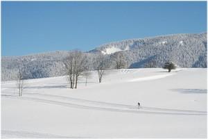 Le departement de l'Isere, Rhone-Alpes, France, nature hiver