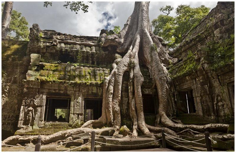 Le temple d'Angkor au Cambodge