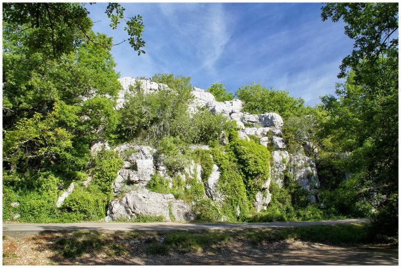 Le Bois de Païolive (Ardèche)