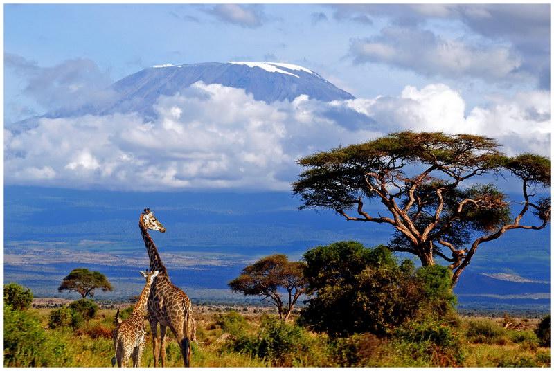 Le Kilimandjaro, en Tanzanie