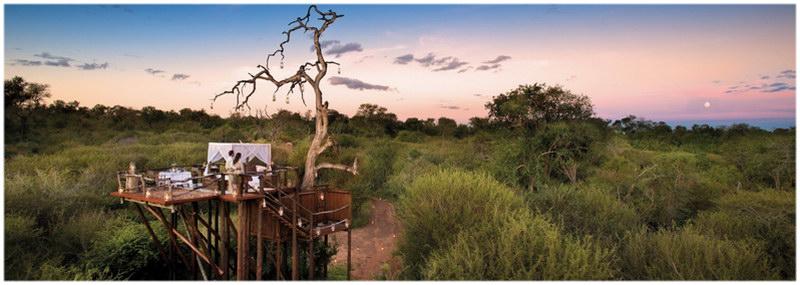 Le parc national de Kruger, en Afrique du Sud