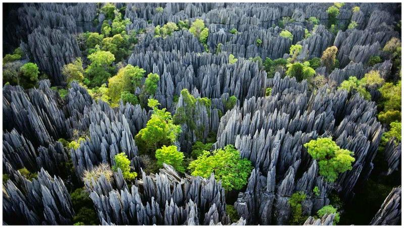Les Tsingy de Bemaraha, à Madagascar