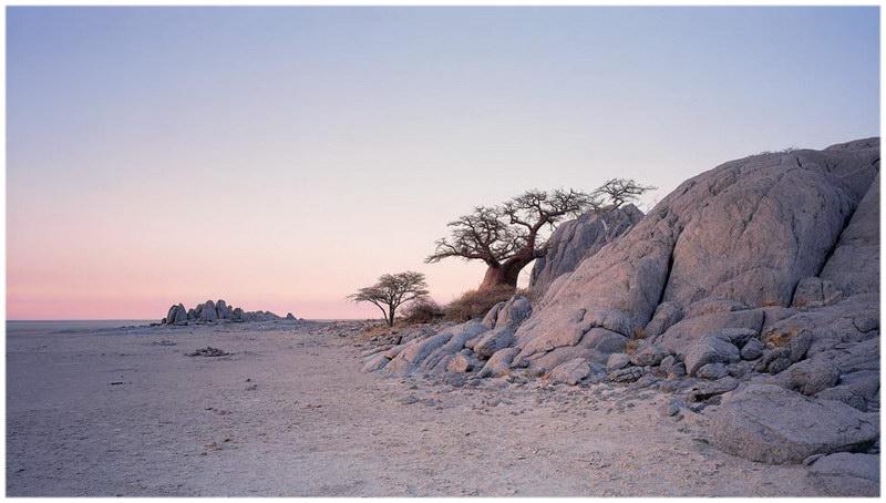 Les pans de Makgadikgadi, au Botswana