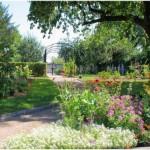 Saint-Louis,Haut-Rhin, Alsace, France, jardin et nature