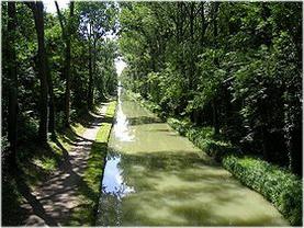 Sevran,Seine-Saint-Denis, Île-de-France, France, nature