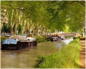 Toulouse,Haute-Garonne, Midi-Pyrénées,France, nature