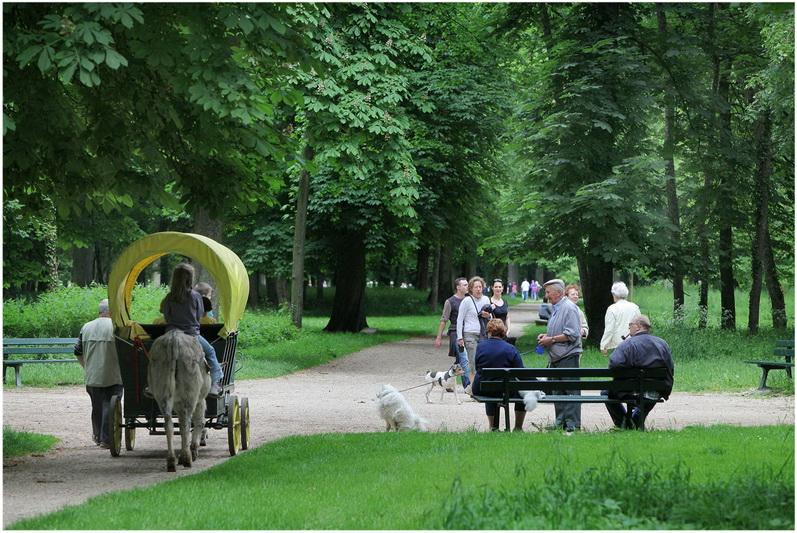 Tourisme et patrimoine de dijon france cap voyage for Emploi espace vert bourgogne