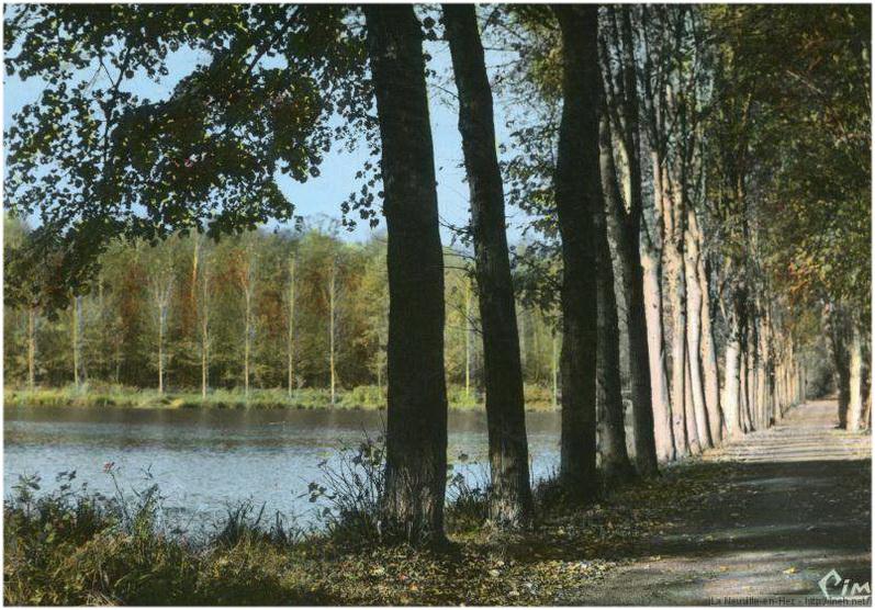 La Neuville-en-Hez,Oise, Picardie, France, eteang et foret