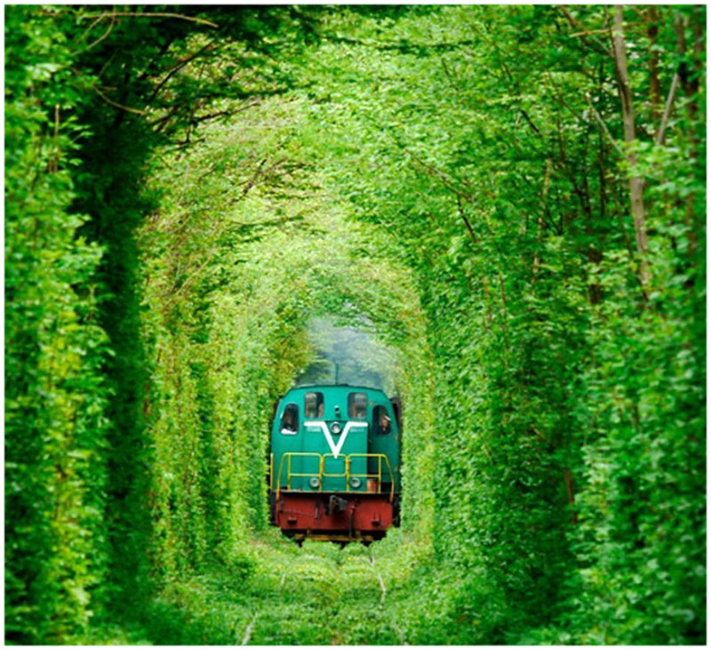 Le tunnel de l'amour, en Ukraine
