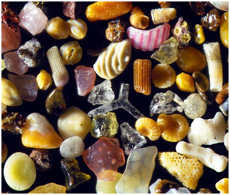 Les grains de sable des plages d'Hawaï passés au microscope.