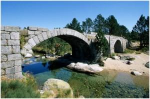 LaLozere,Languedoc-Roussillon-Midi-Pyrenees, France, nature