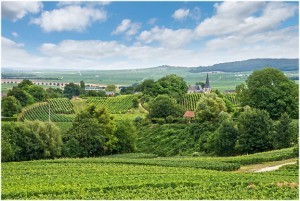 LesArdennes,Alsace-Champagne-Ardenne-Lorraine, France, envir
