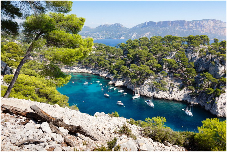Calanques of Port Pin in CassisProvence-Alpes-Cote d'Azur, Franc