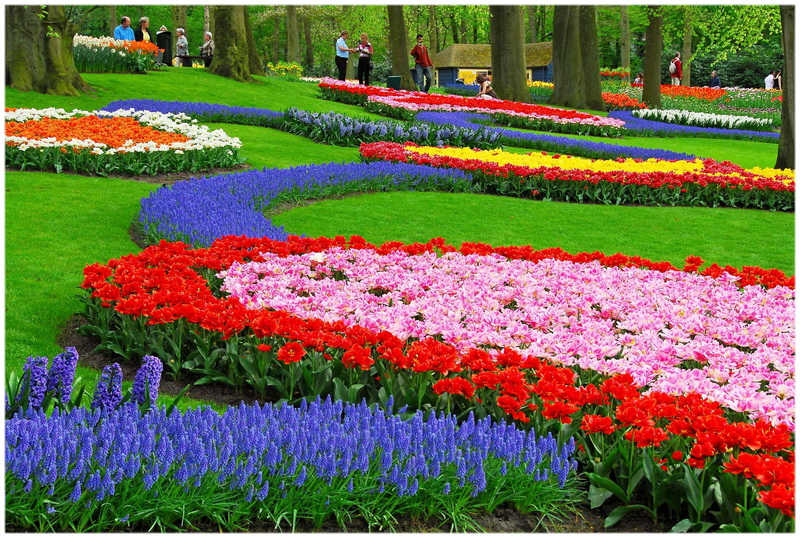 Jardin Keukenhof à Lisse (Pays Bas)