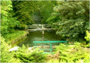 L'Aube,régionAlsace-Champagne-Ardenne-Lorraine,, hydrograph