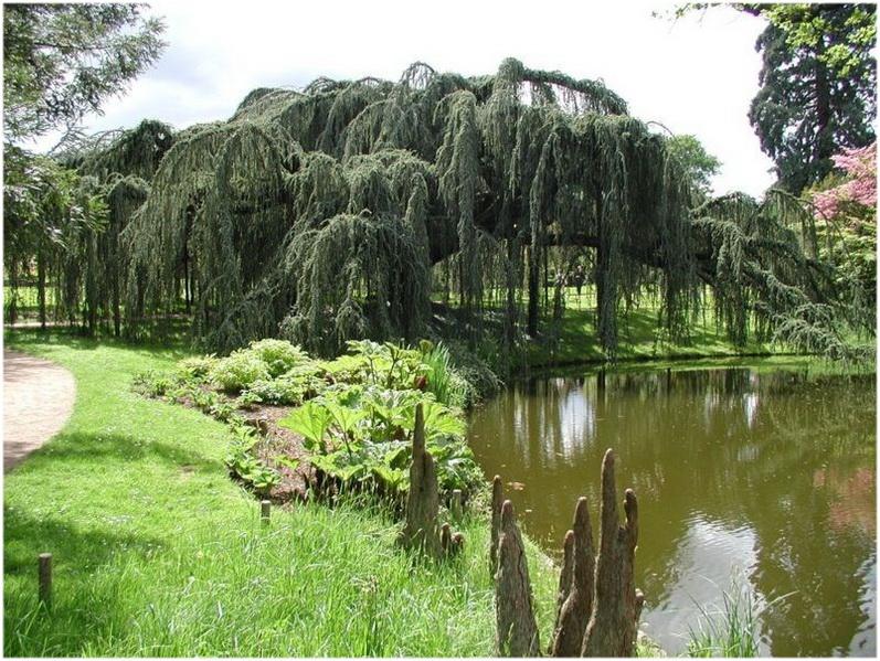Antony, Hauts-de-Seine,Île-de-France, France, espace vert