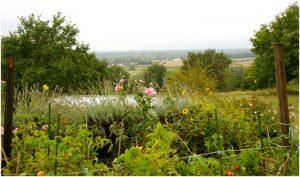 Lestiac-sur-Garonne, laGironde, Aquitaine-Limousin-Poitou-Char