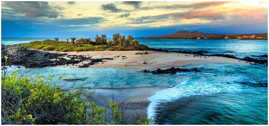 bord-de-la-mer-galapagos