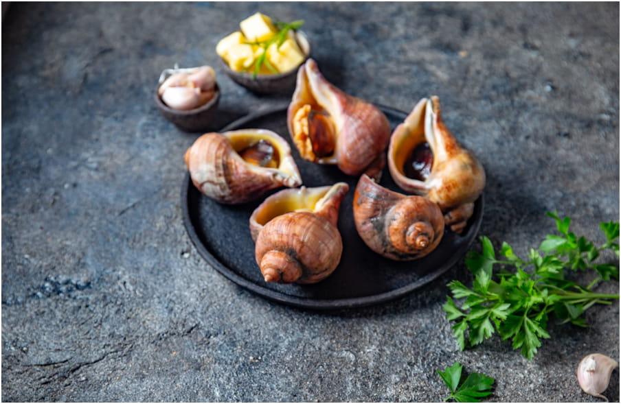 Cuisine à base de fruits de mer, voyage en sardaigne