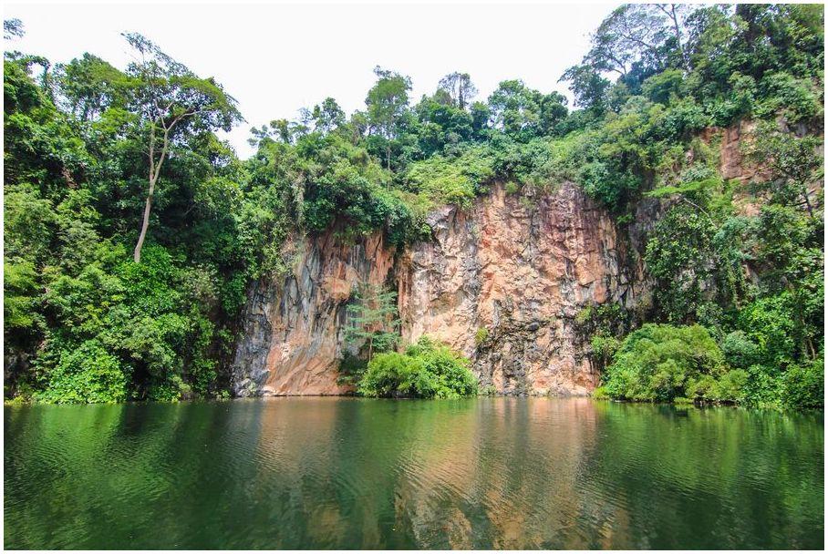 lune-de-miel-Singapour-Parc-municipal-de-Bukit-Batok