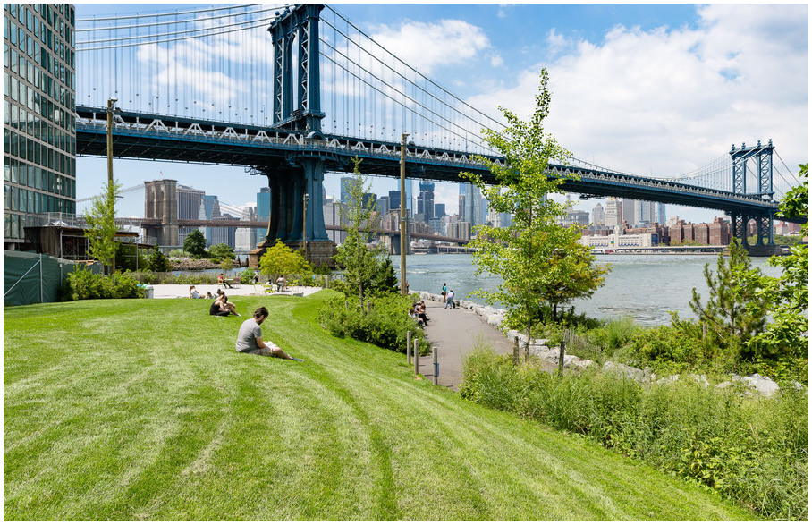 parc-pont-brooklyn-new-york