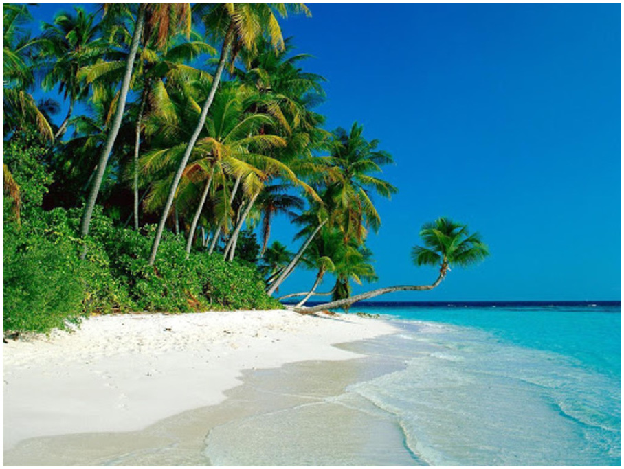 Playa-del-Salado-havane