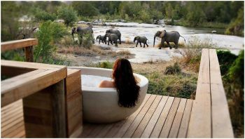 resorts-de-luxe-Londolozi-Sabi-Sands