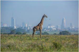 kenya-pays-2021
